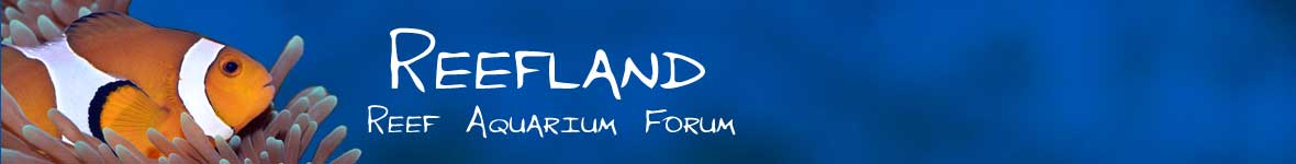 Saltwater and Reef Aquarium Forums - Reef Aquarium Forum