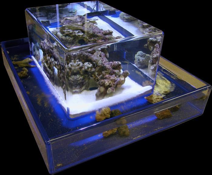 30 gallon fish tank zero edge giant aquariums 140 gal for Cylindrical fish tank